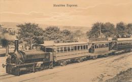 CPA ROYAUME UNI Rare Card Of Train Mumbles Express - Train à Vapeur - Pays De Galles