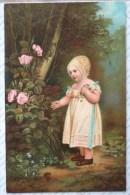 Litho CHROMO ILLUSTRATEUR  STENGEL 29275  WESTALL Fille Fillette Bonnet Debout Devant Rosier Roses Tb Top - Autres Illustrateurs