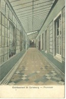 Paliseul Carlsbourg Etablissement Saint Joseph Promenoir - Paliseul