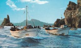 COSTA BRAVA (DIL95) - Pêche