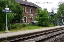 Gare De Herbitzheim , Département Du Bas-Rhin - Une Photo Reproduit Carte Postale  10x15 Cm. - Stations Without Trains