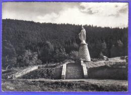 Carte Postale 88. Raon-l'Etape  La Vierge De La Libération  Trés Beau Plan - Raon L'Etape