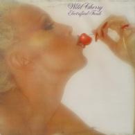 * LP *  WILD CHERRY - ELECTRIFIED FUNK  (Holland 1977) - Soul - R&B