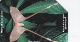 Sierra Leone, SRL-14, Eustera Brachyura, Butterfly, 2 Scans. - Sierra Leone