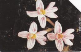 Sierra Leone, SRL-16, Orchid 2, 2 Scans. - Sierra Leone