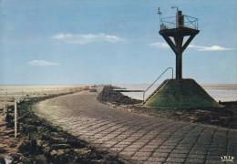 85---ILE DE NOIRMOUTIER---le Passage Du Gois---voir 2 Scans - Ile De Noirmoutier