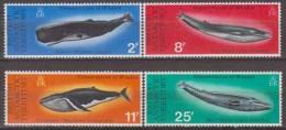 Antarctic. British Territory.1977. Whales.Michel.64-67. MNH 22081 - Brits Antarctisch Territorium  (BAT)