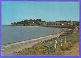 Carte Postale 22. Saint-Jacut-de-la-mer  La Banche Trés Beau Plan - Saint-Jacut-de-la-Mer