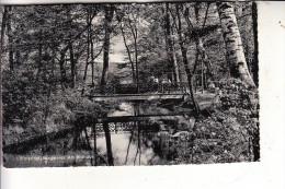5210 TROISDORF, Burgweier - Troisdorf