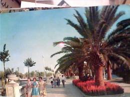 10 CARD S SAN BENEDETTO DEL TRONTO  VB1960/88 FC6914 - Ascoli Piceno