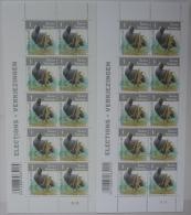 2008- A.BUZIN- 20 FOULQUE ELECTION - P1-P2 = PAPIER DE COULEUR DIFFERENTE - 1985-.. Oiseaux (Buzin)