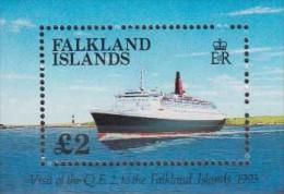 Antarctic.Falklands Islands.1993. Ship.Sheet.1v.Michel.10.MNH.22134 - Stamps
