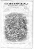 Rivista Del 1840   Splendida Veduta Panoramica Di GENOVA - Libri, Riviste, Fumetti