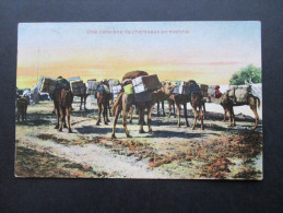 AK 1912Kolonie Frankreich Indochina. Une Caravane De Chemeaux En Marche. Kamele - Briefe U. Dokumente
