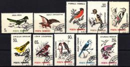 RUMÄNIEN 1993 - Vögel, Birds - MiNr.4875-4884 Kompletter Satz - Pájaros
