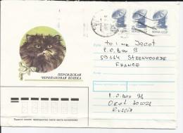 RUSSIE - ENVELOPPE ILLUSTREE POUR LA FRANCE THEME CHAT - Hauskatzen