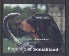 CHIEN DE CHASSE Somaliland 1 Bloc De Vignettes DOG HUND - Chiens