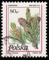 POLAND - Scott #3232 Pinus Mugo (*) / Used Stamp - Alberi