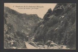 DF / 34  HERAULT / ENVIRONS DE LA SALVETAT / LE SAUT DE VESOLE / LES GORGES - La Salvetat