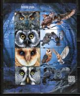 PL 2015 MI BL 244 POLISH BIRDS USED - Blocks & Kleinbögen