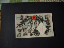 C.P Souvenir De Vesoul ! -C.P écrite Et Timbrée .(variété Fleur Rose Au-dessus De La Rouge) - Vesoul