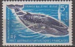 Antarctic.T.A.A.F.1966.Whale.Michel.36.MNH.22145 - Zonder Classificatie