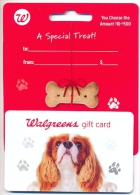 Walgreens, U.S.A.  Gift Card For Collection On Its Backer, No Value # 18a - Gift Cards