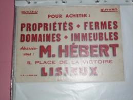 BUVARD Publicitaire  BLOTTING PAPER  M Hebert  Lisieux Immeuble Proprietes Domaines - T