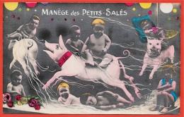 """CPA Fantaisie Bébés Multiples """"Manège Des Petits-Salés"""" (Cochons) Graines De Choux - Bébés"""