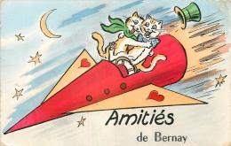 27 BERNAY AMITIÉS AVEC CHATS - Bernay