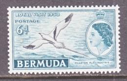 BERMUDA  163   *     ROYAL  VISIT  BIRD - Bermuda