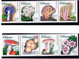 El Salvador 2001 - - Pilze