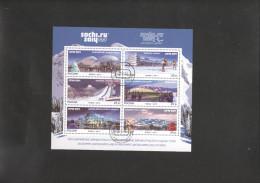 RUSSIA 2013 W. Olympics  Sheet USED - 1992-.... Federation