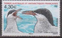 Antarctic.T.A.A.F.2010.Birds.MNH.22187 - Zonder Classificatie