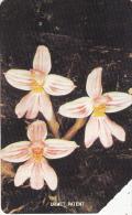 SIERRA LEONE - Orchid 2(25 Units), Used - Sierra Leone