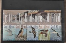 M 371 ++ SOUTH AFRICA 2014 BIRDS OISEAUX VOGELS MNH ** - Bermuda