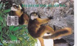 Madagascar,  MDG-12, Lemurs Of Madagascar, 2 Scans - Madagaskar