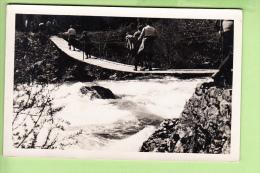 VILLARD De LANS - CARTE PHOTO : Traversée D´un Pont Suspendu En Bois Dans Le VERCORS - 2 Scans - Villard-de-Lans