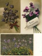 Boon Compleanno  Violettes Grace à Vous Peuvent Palir Les Roses  Soldanelle Délicate Lot De 3 Cpa - Fleurs