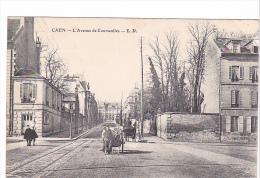 25529 CAEN - Avenue Courseulles - LD  -caleche Charette - Caen