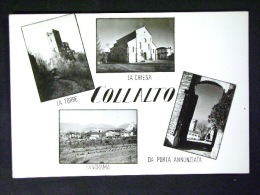 VENETO -TREVISO -COLLALTO -F.G. - Treviso
