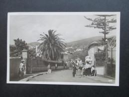 AK / Echtfoto 1932 Madeira Funchal. Einheimische - Madeira