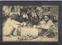 TAMATAVE - Préparation Du Cacao - BE - Madagascar