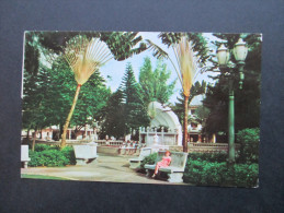 AK / Echtfoto 1968 Panama / USA / Canal Zone. The 5th November Park. - Panama