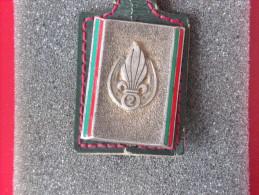 """Insignes Militaire """"2ème Régiment Etranger D'Infanterie"""" -  Military Badges P.V. - - Army"""