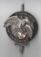INSIGNE COMMANDO ENTRAINEMENT N° 1  CNEC  - DELSART GS 94 - Hueste
