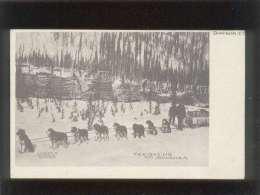 Dawson  Y.T. Freighting On Bonanza  Attelage De Chiens  édit. Landahl's Emporium Canada , Précurseur - Honden
