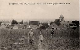 Morey : Vue Générale Depuis Le Grand Cru Du Clos Du Tart (Editeur H. Guyonnet, Parnot) - Other Municipalities