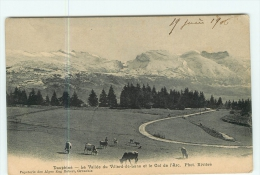 VILLARD De LANS - Vallée Avec Vaches Au Paturage - Col De L' Arc - 2 Scans - Villard-de-Lans