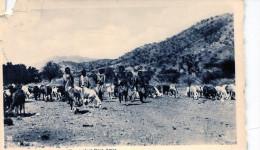 Africa Orientale. Pastori Beni Amer - Eritrea